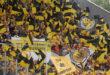 Alemannia Aachen nimmt Angreifer Oluwabori Falaye unter Vertrag